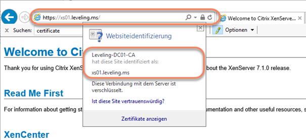 ISS SSL Zertifikat XenServer 7.x installieren | PointerCrash